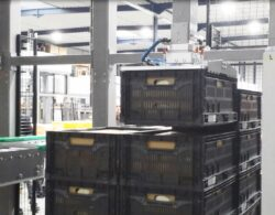 palletising crates